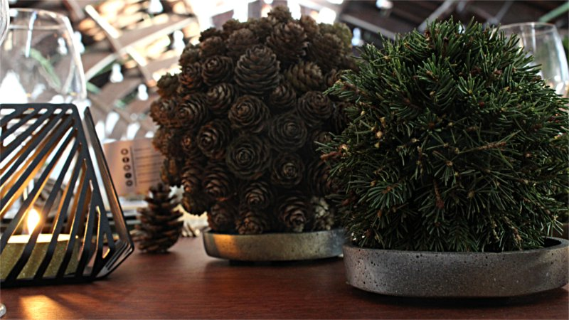 Inspiration for your Christmas table with BY DYB: Nature spheres placed on saucers from pots