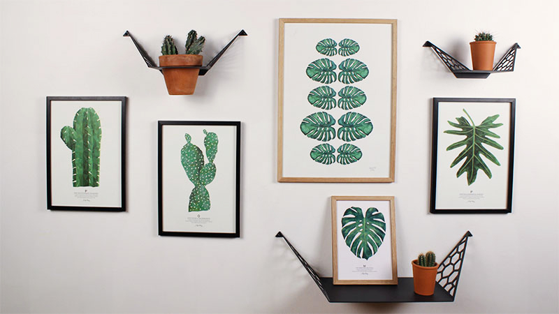 Plant images with shelves