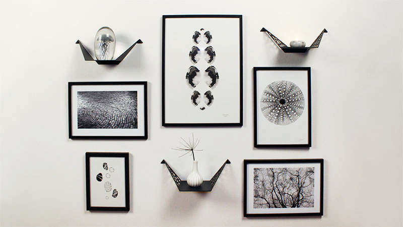 Shelves with black and white images on a wall