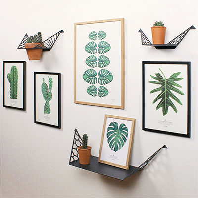 Gallerywall with plant theme, pictures of cacti and monstera leaf, BY DYB planthanger with large cactus and shelves with small cacti